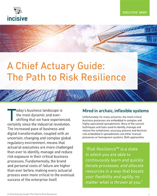 Chief Actuary Guide - The Path to Risk Resilience - Executive Brief