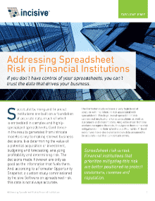 Executive Brief: Addressing Spreadsheet Risk in Financial Institutions