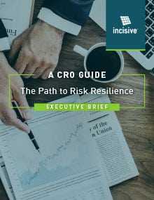 A CRO Guide - The Path to Risk Resilience - Executive Brief